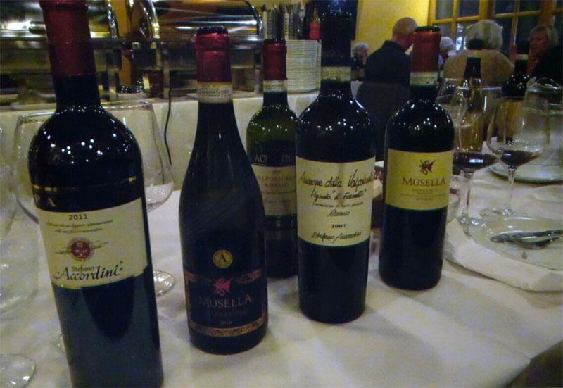 Veneto vine linet up
