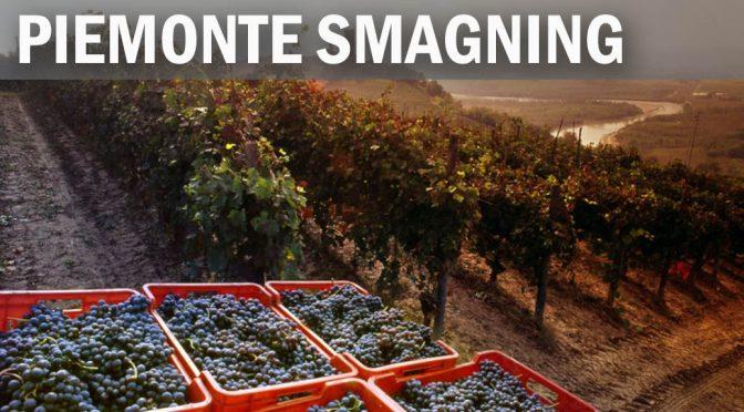 Bella Italia – dejlige vine og masser af delikatesser direkte fra Piemonte (4)