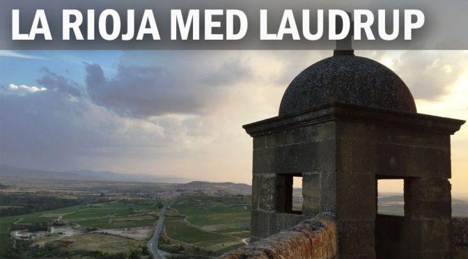 Så dribler vi rundt i La Rioja med Laudrup og skyder på 2 mål (3)